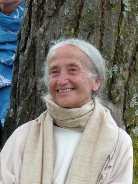 Il corpo che medita: Yoga e Buddhismo Zen con Adriana Rocco